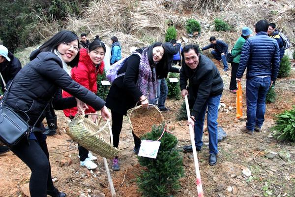 植树节之绿色环保活动